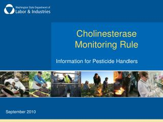 Cholinesterase Monitoring Rule