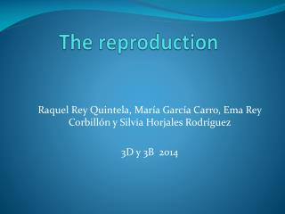 The reproduction