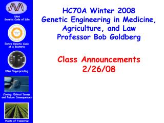 HC70A Winter 2008 Genetic Engineering in Medicine,  Agriculture, and Law Professor Bob Goldberg Class Announcements  2/2