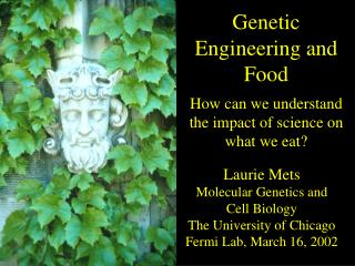 Laurie Mets Molecular Genetics and Cell Biology The University of Chicago Fermi Lab, March 16, 2002