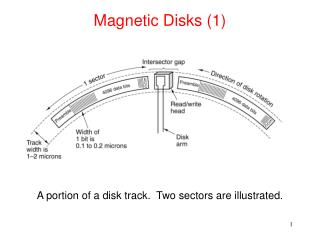 Magnetic Disks (1)