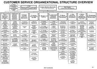CUSTOMER SERVICE ORGANIZATIONAL STRUCTURE OVERVIEW