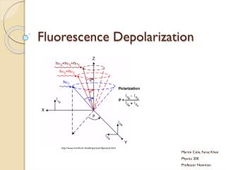 Fluorescence Depolarization