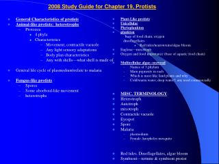 2008 Study Guide for Chapter 19, Protists