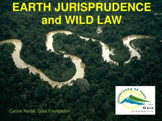 EARTH JURISPRUDENCE and WILD LAW