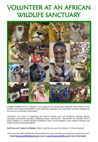 VOLUNTEER AT AN AFRICAN WILDLIFE SANCTUARY
