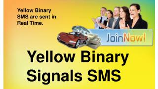 Yellow Binary Signals SMS