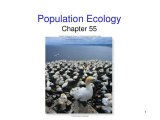 Population Ecology Chapter 55