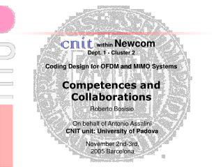 within  Newcom  Dept. 1 - Cluster 2 Coding Design for OFDM  and  MIMO Systems