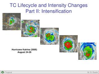 TC Lifecycle and Intensity Changes Part II: Intensification