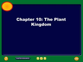 Chapter 10: The Plant Kingdom