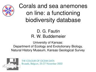 Corals and sea anemones on line: a functioning biodiversity database