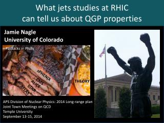 What jets studies at RHIC  can tell us about QGP properties
