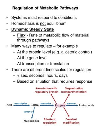 Regulation of Metabolic Pathways