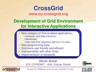 Development of Grid Environment for Interactive Applications