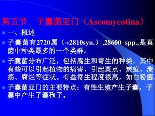 第五节    子囊菌亚门( Ascomycotina ) 一、概述 子囊菌有 2720 属( +2810syn. ) ,28600 spp., 是真菌中种类最多的一个类群。