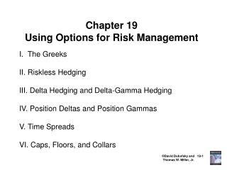 Chapter 19 Using Options for Risk Management