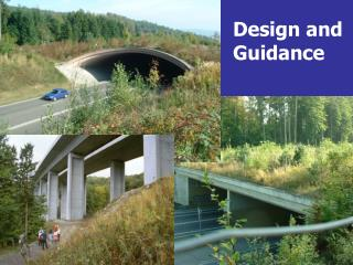 Design and  Guidance