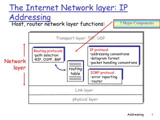The Internet Network layer: IP Addressing