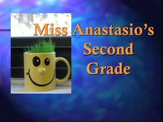 Miss Anastasio's          Second          Grade