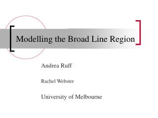 Modelling the Broad Line Region