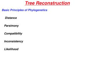 Tree Reconstruction