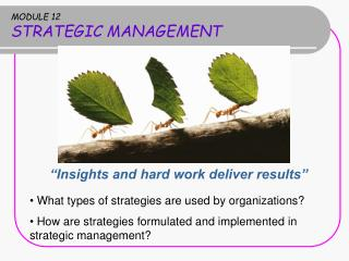 MODULE 12 STRATEGIC MANAGEMENT