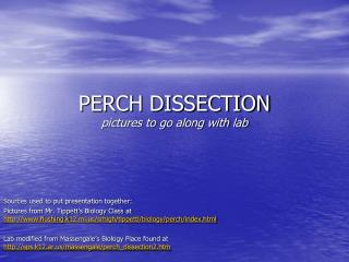 PERCH DISSECTION  pictures to go along with lab