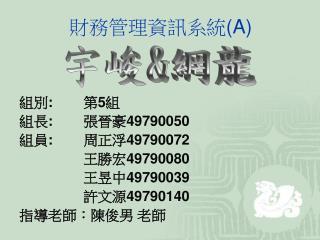財務管理資訊系統 (A)