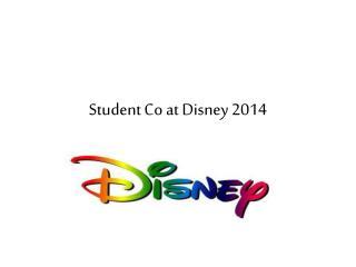 Student Co at Disney 2014