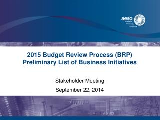 2015 Budget Review Process (BRP) Preliminary List of Business Initiatives