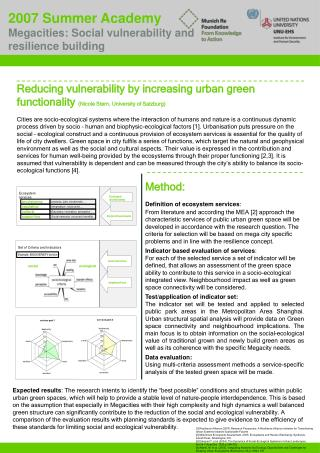 2007 Summer Academy Megacities: Social vulnerability and resilience building
