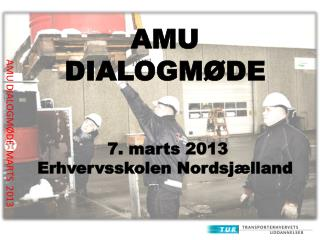 AMU DIALOGMØDE MARTS 2013