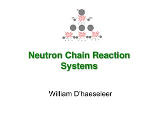Neutron Chain Reaction Systems