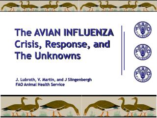 The AVIAN INFLUENZA Crisis, Response, and The Unknowns