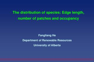 The distribution of species: Edge length, number of patches and occupancy