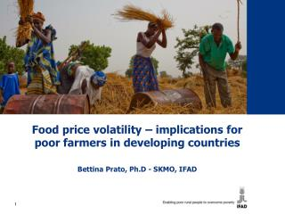 Food price volatility – implications for poor farmers in developing countries
