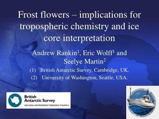 Frost flowers – implications for tropospheric chemistry and ice core interpretation