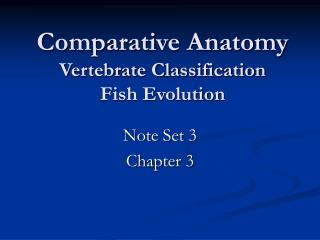 Comparative Anatomy Vertebrate Classification Fish Evolution