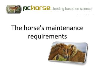 The  horse's maintenance requirements