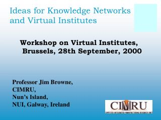 Ideas for Knowledge Networks and Virtual Institutes