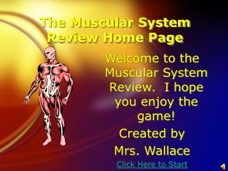 The Muscular System Review Home Page