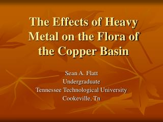 The Effects of Heavy Metal on the Flora of the Copper Basin
