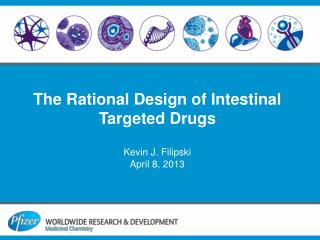 The Rational Design of Intestinal Targeted Drugs