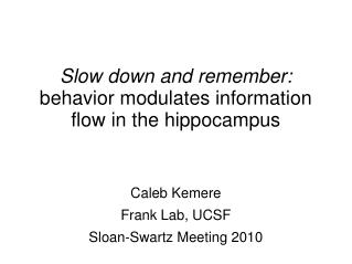 Slow down and remember: behavior modulates information flow in the hippocampus