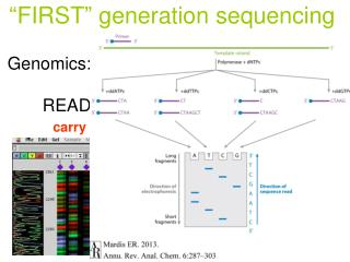 Genomics: 	READING genome sequences	 	ASSEMBLY of the sequence 	ANNOTATION of the sequence
