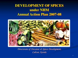 DEVELOPMENT OF SPICES  under NHM Annual Action Plan 2007-08