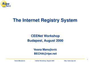 The Internet Registry System
