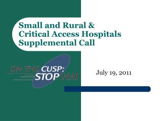 Small and Rural &  Critical Access Hospitals  Supplemental Call