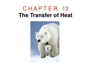 C H A P T E R 13 The Transfer of Heat